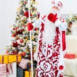 Дед Мороз и Снегурочка Новосибирск, Новосибирск