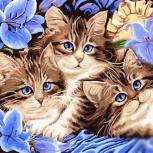 """Картина по номерам """"Котята"""" 40х50 см, Новосибирск"""