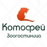 """Зоогостиница """"Котофей"""", передержка кошек, Новосибирск"""