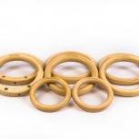 Гимнастические кольца, Новосибирск