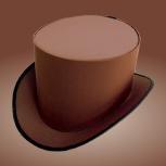 Шляпа цилиндр коричневого цвета, Новосибирск
