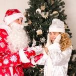 Аниматоры, Дед Мороз и Снегурочка, Новый Год, Новосибирск