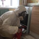 Уничтожение насекомых + барьерная защита в подарок!, Новосибирск