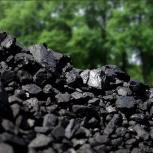 Каменный уголь, Новосибирск
