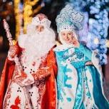 Дед Мороз и Снегурочка с выездом на дом, Новосибирск
