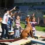 Экскурсионно-познавательные программы для дошкольников и школьников, Новосибирск
