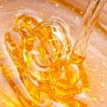Мёд алтайский горный, Новосибирск