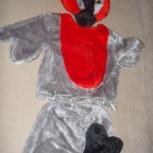 продам костюм снегиря, Новосибирск