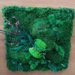 Картины панно мох, Новосибирск