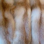 Шкуры лисы, Новосибирск