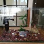 Продам аквариум с приятным бонусом., Новосибирск