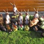 Мишени для лука и арбалета в форме животных (3д мишени, 3D target), Новосибирск