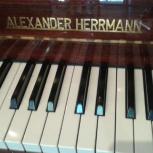 Фортепиано -Alexander Herrmann, Новосибирск