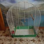 Клетка железная для средних попугаев, Новосибирск
