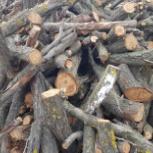 Бесплатно дрова!, Новосибирск