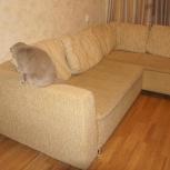 Продам угловой диван!, Новосибирск