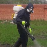 Обработка участков от комаров. клещей. Уничтожение клещей, комаров, Новосибирск