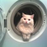 Куплю и вывезу стиральные машины, Новосибирск
