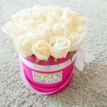 Розы в коробках. Доставка по городу  бесплатно, Новосибирск
