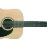 Продам гитару 12- струнную, Новосибирск