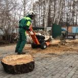 Удаление пней любой сложности в городе и области, Новосибирск
