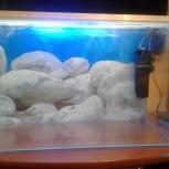 Продам аквариум 66 литров, Новосибирск