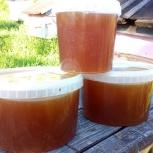 Таёжный мёд, Новосибирск