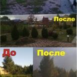 Очистка заросших участков от кустарников, сорняков, деревьев, Новосибирск