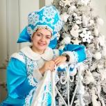 Дед мороз и снегурочка на дом - нереальные скидки, Новосибирск