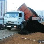 чернозем, Новосибирск