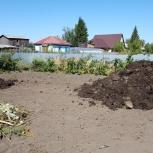Перегной коровий!, Новосибирск