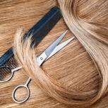 Купим дорого волосы в Новосибирске, Новосибирск