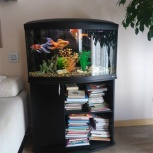 Продам аквариум Cayman 80 с тумбой, Новосибирск