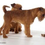 Профессиональная стрижка собак и кошек. Выезд, Новосибирск