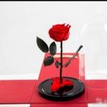 Долговечная роза в колбе арт6775, Новосибирск