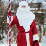 Дед Мороз на дом, Новосибирск