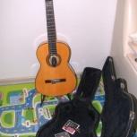 Классическая фламенко гитара Francisco Esteve2GR5F, Новосибирск