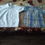 Продам рубашки и водолазки, Новосибирск