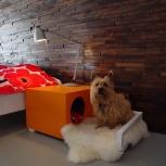 Мебель для домашних животных, Новосибирск