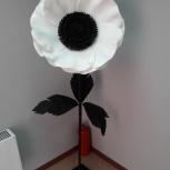 Продам декоративный цветок, Новосибирск