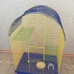 Клетка для грызунов, Новосибирск