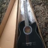 Гитара новая новая, Новосибирск