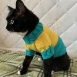 Вязаная одежда для кошек и собак, Новосибирск
