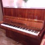 Продам фортепиано, Новосибирск