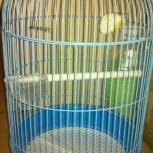 продам клетку для попугая, Новосибирск