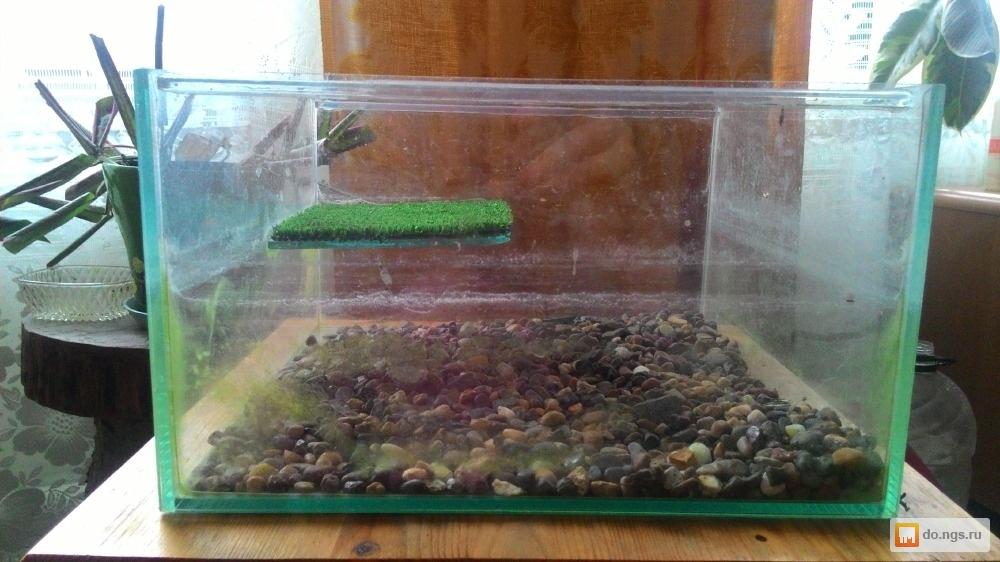 Аквариумный фильтр для черепах