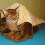Продаю меховые мешки для кошек и маленьких собачек, Новосибирск