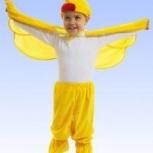 Новогодний костюм Цыпленок, Новосибирск