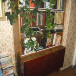 Книжный шкаф для дачи, Новосибирск