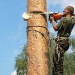 Снос, спил и обрезка деревьев, веток и кустарников, Новосибирск